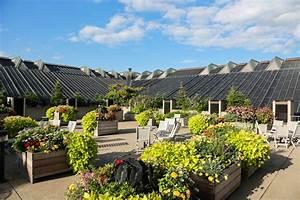 Terrassenplatten Verlegen Kosten : dachterrasse platten verlegen ~ Eleganceandgraceweddings.com Haus und Dekorationen