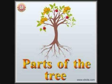parts   tree youtube