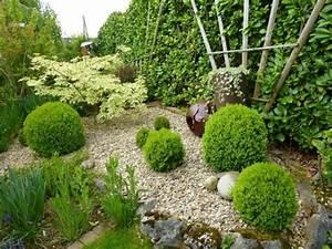 1000 idees sur le theme erables japonais sur pinterest With idee deco terrasse jardin 16 fusain du japon plantation taille et entretien