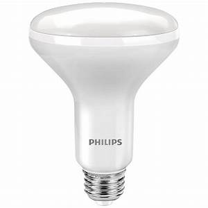 Philips w equivalent daylight br dimmable led flood
