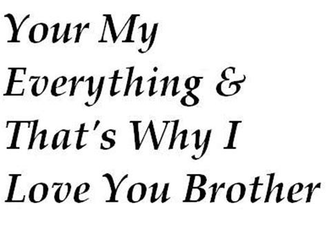 I Love U My Brother Quotes