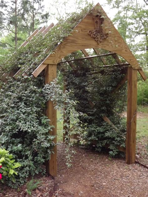 covered trellis my garden arbor covered with elaeagnus garden style pinterest gardens arbors and love