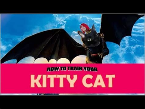 train  cat   train  dragon parody