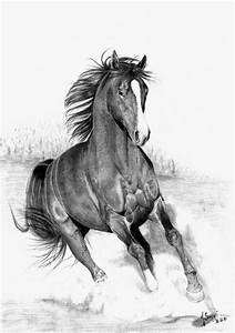 Running Horse by SthMore.deviantart.com on @deviantART ...
