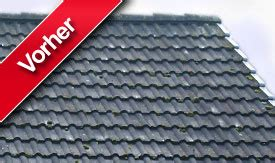 Flachdachsanierung Ein Fall Fuer Den Fachmann by Dachsanierung Flachdachsanierung Dachrenovierung Kosten