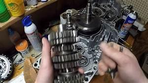 Yamaha Raptor 350 And Yamaha Warrior 350 Engine Rebuild