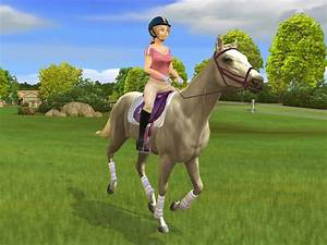 Pferde Spiele 3d : my horse and me 2 riding for gold horse game for pc ps2 wii xbox 360horse games ~ Eleganceandgraceweddings.com Haus und Dekorationen