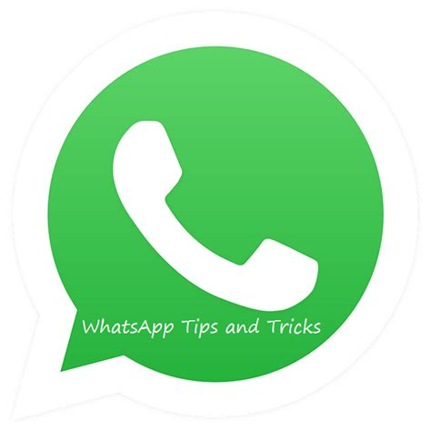 top 10 whatsapp tips and tricks that you should muchtech