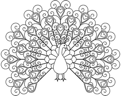 Best Peacock Printable Coloring Pages For Kids Boys And