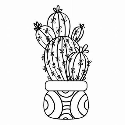 Cactus Drawing Plant Pot Silhouette Multiple Transparent