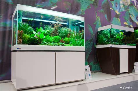 nano aquarium mit unterschrank interzoo 2008 segelflosser de