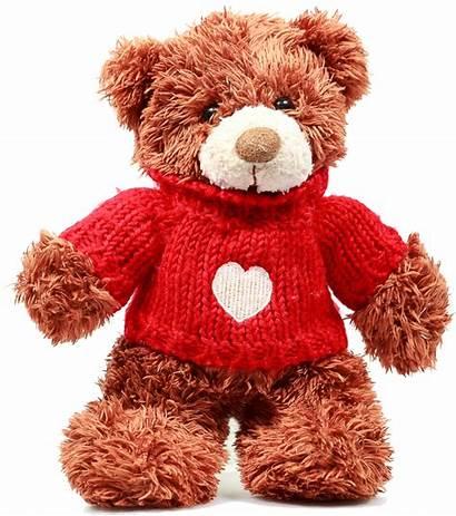 Teddy Bear Pngimg