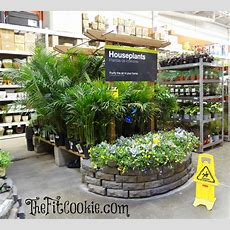 Earth Dayinspired Diy Projects With The Home Depot  The