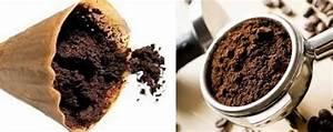 Marc De Café Canalisation : les astuces naturelles du marc de caf ~ Melissatoandfro.com Idées de Décoration