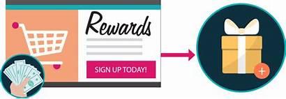 Loyalty Programs Program Retail Shopping Paid Customer
