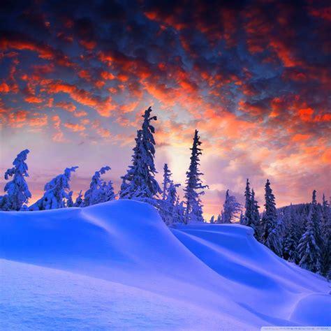 Winter Christmas 4k Hd Desktop Wallpaper For 4k Ultra Hd