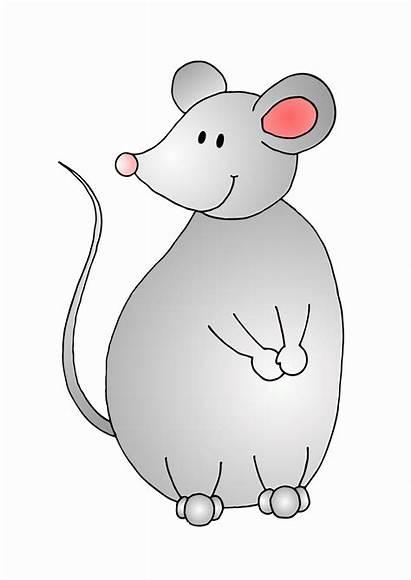 Tierbilder Neue Maus Bunt Gruesse Liebe