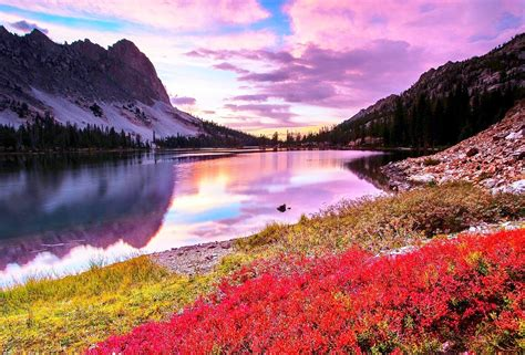 nature wallpapers high quality images natural cool