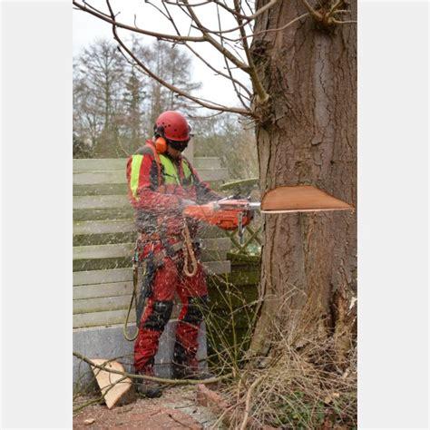 Garten Und Landschaftsbau Rendsburg werkst 228 tten materialhof qualifizierung arbeit arbeit