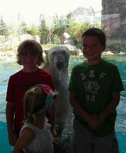 28 of the Best Animal Photobombs of All Time   Pleated Jeans