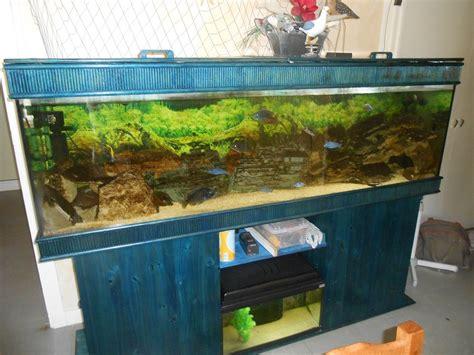 aquarium 600 litres pas cher petites annonces aquarium tout 233 quip 233