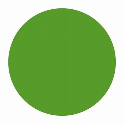 Circle Snowsports Levels Greencircle Turning Link