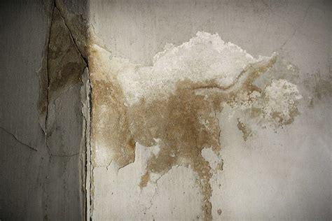 chambre humide que faire maison humide que faire montage avec ventilateur arrt