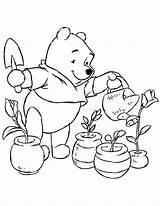 Coloring Plants Plant Pooh Winnie Colorir Regando Flores Desenho Colouring Watering Clipart Jardim Pflanze Ausmalbilder Seite Malvorlagen Tudodesenhos Kleurplaat Printable sketch template