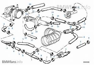 Bmw E28 Vacuum Diagram