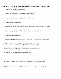 Worksheet And Reading Guide