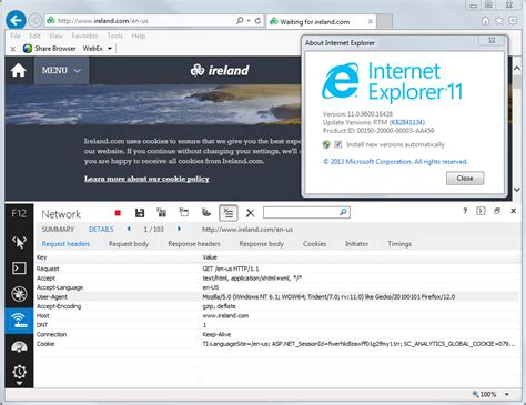 firefox instances ie11 detected some