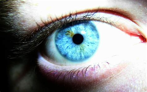 Blue Eyed by New Wallpapers Jokes Blue Photos Hd