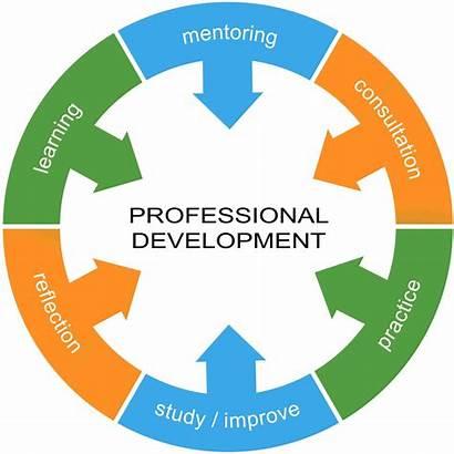 Development Professional Skills Teachers