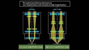 More Zoom In Stereo Microscopy
