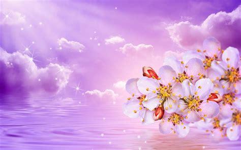 sfondi primavera fiori scarica sfondi primavera fioritura ramo fiori natura