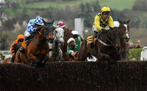 cheltenham gold cup  odds  ante post betting tips