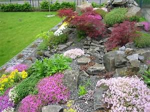 Hang Bepflanzen Bodendecker : steingarten anlegen pflanzen versand harro 39 s pflanzenwelt kaufen bestellen online ~ Sanjose-hotels-ca.com Haus und Dekorationen