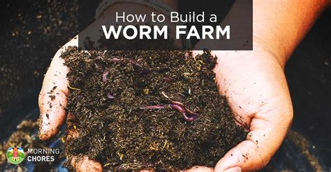 build  worm farm  home  monetize   profit