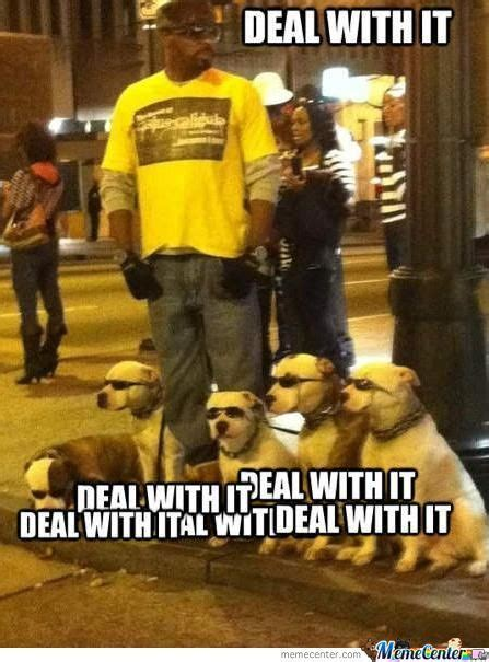 Deal With It Meme - deal with it memes best collection of funny deal with it pictures