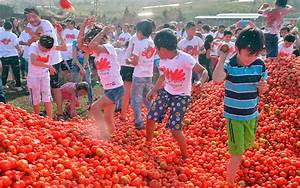Juicy Photos from Bogotá's Tomato Throwing Festival ...