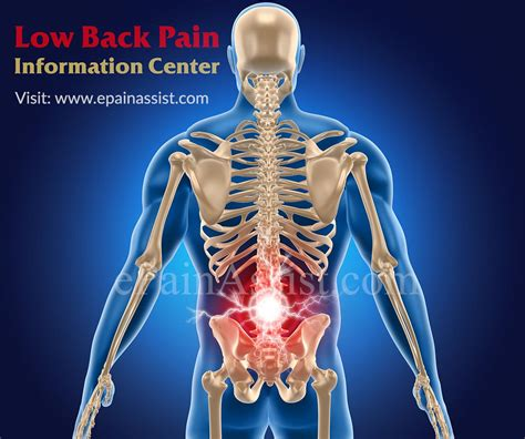 Low Back Pain Information Centerbaastrup Syndromelumbar. Best Travel Insurance Plans Lawyer Vs Doctor. Barnett Heating And Air Lowest Mortgage Rates. Insurance For Plumbers Energy Billing Systems. Healthy Homemade Treats For Dogs. Pay Of Dental Assistant Uop Graduate Programs. Kent State Application Deadline. New York Life Insurance Rating. Open Source Timesheet Management