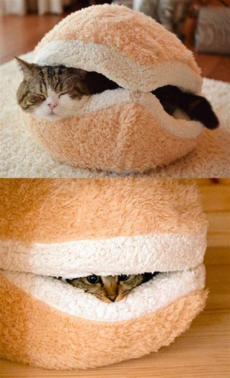 mini canapé lit des créatons de meubles pour les chats espace zapping