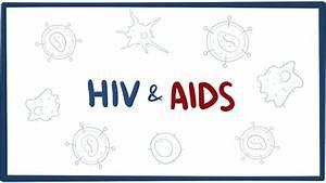 Hiv  U0026 Aids