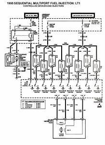 Lt1 Wiring Harness Diagram
