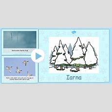 Iarna  Prezentare Powerpoint  Iarna, Prezentare, Power Point, Informații