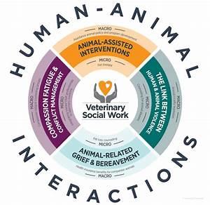 Veterinary Social Work
