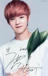 [HQ SCANS] EXO @ Nature Republic Photo Cards & Lip Balms ...  Luhan