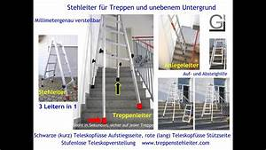 Leiter Für Treppenstufen : die treppenleiter die auf jeder ~ A.2002-acura-tl-radio.info Haus und Dekorationen