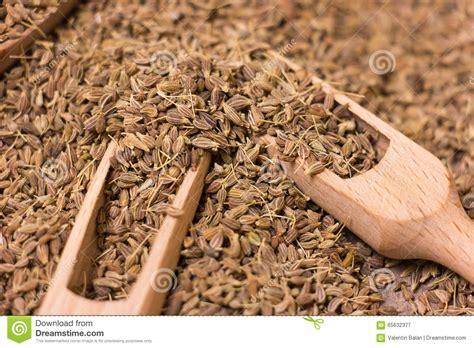 Anise Seeds Stock Photo Image 65632377