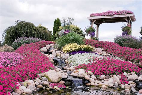 build  rock garden    garden thrive